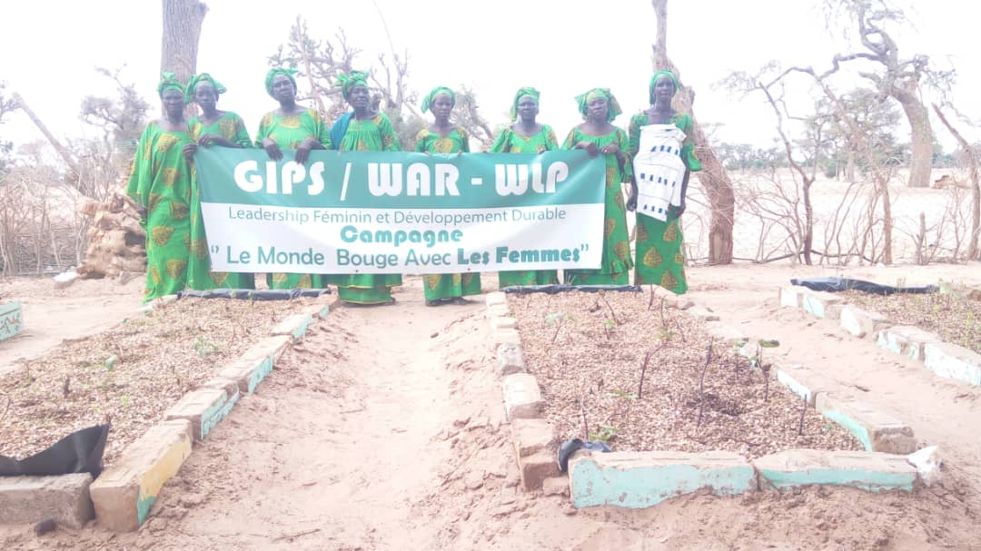 GIPS War Women Advocate for Climate Justice